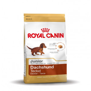 Royal Canin Gravhund Junior hundefoder