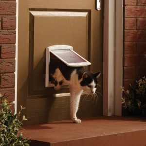 Staywell Original Small Pet Door