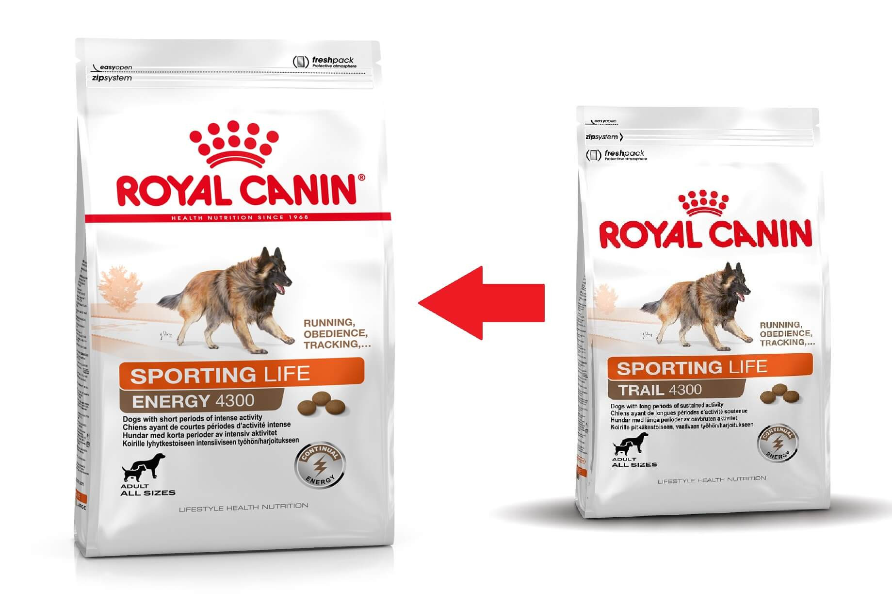Royal Canin Sporting Life Trail 4300 hundefoder