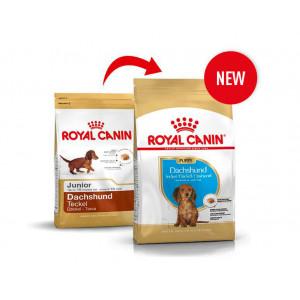 Royal Canin Junior Gravhund hundefoder