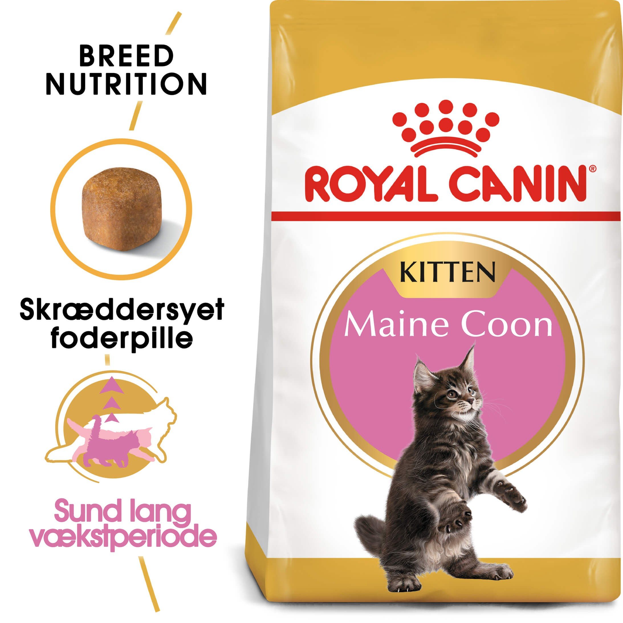 Royal Canin Kitten Maine Coon kattefoder