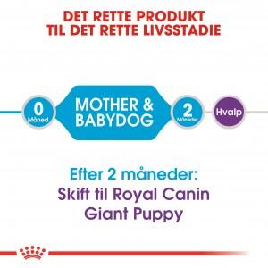 Royal Canin Giant Starter hundefoder