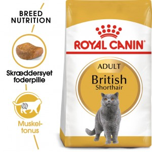 Royal Canin Adult British Shorthair kattefoder