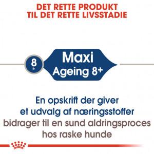 Royal Canin Maxi Ageing 12+ natvoer