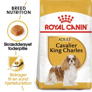 Royal Canin Adult Cavalier King Charles hundefoder