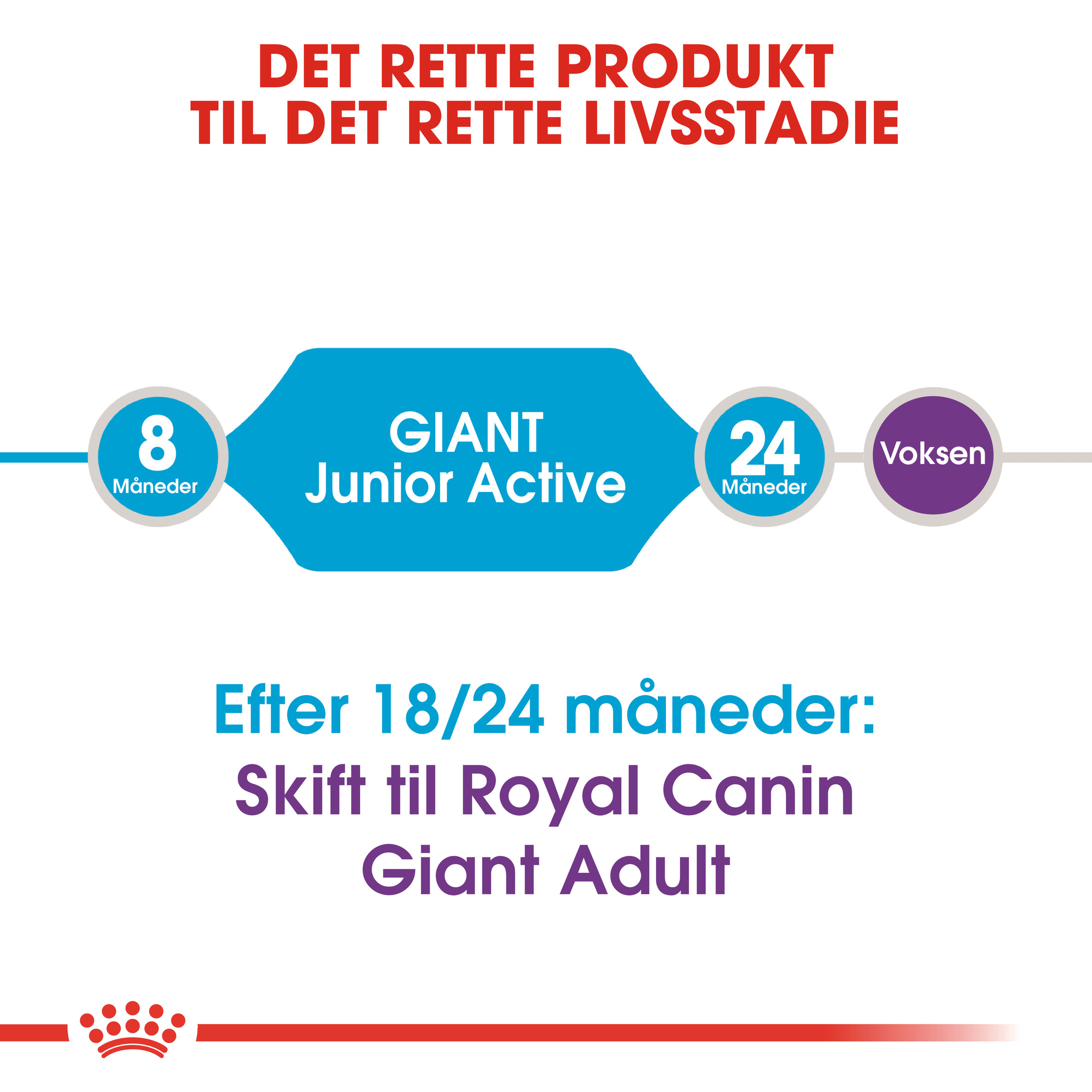Royal Canin Giant Junior Active hondenvoer