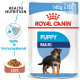 Royal Canin Maxi Puppy vådfoder