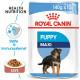 Royal Canin Maxi Puppy vådfoder
