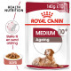 Royal Canin Medium Ageing 10+ vådfoder